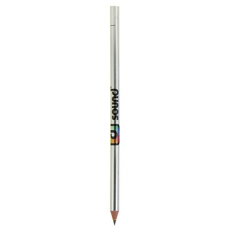 Stylo Evolution Metallic BIC